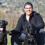 Entrenamiento, educación o adiestramiento canino